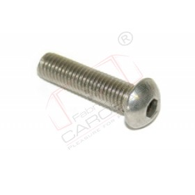 Screw M6x30 ISO 7380, inox