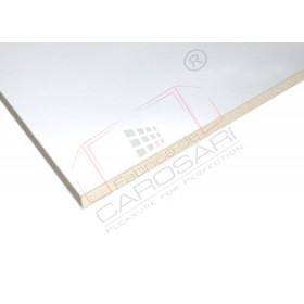 Panel PES 17x4900x2200mm